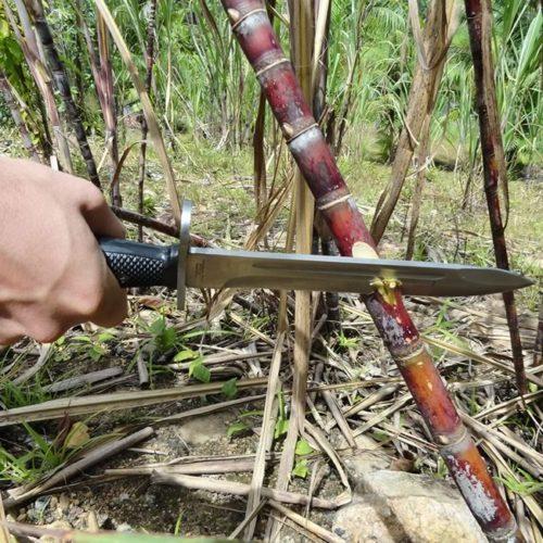 ntk-bayonet-3